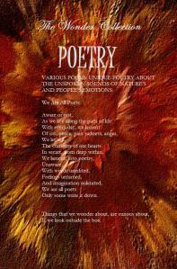 Poetry plain BACK cover vibrant